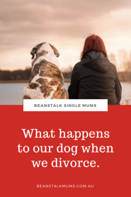 Divorce and pets
