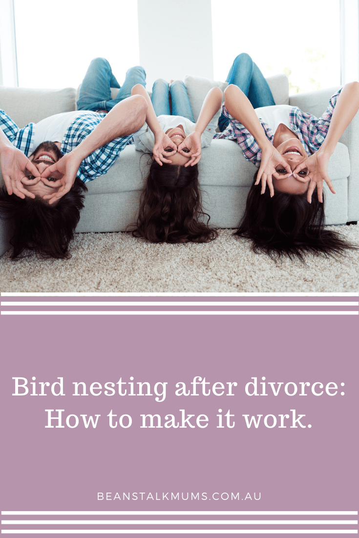 Bird nesting after divorce | Beanstalk Mums