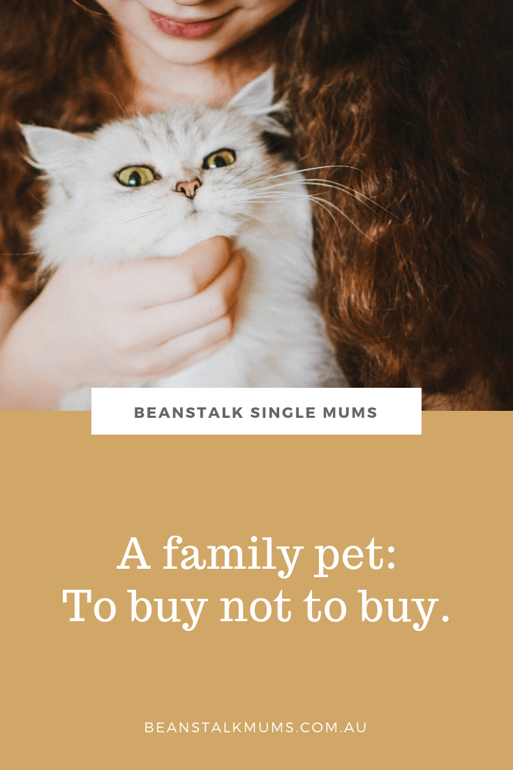 The family pet: To buy or not to buy | Beanstalk Mums Pinterest