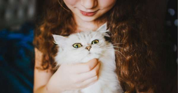 The family pet: To buy or not to buy | Beanstalk Mums
