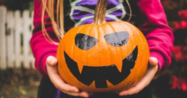 No carve pumpkin decorations for Halloween | Beanstalk Mums