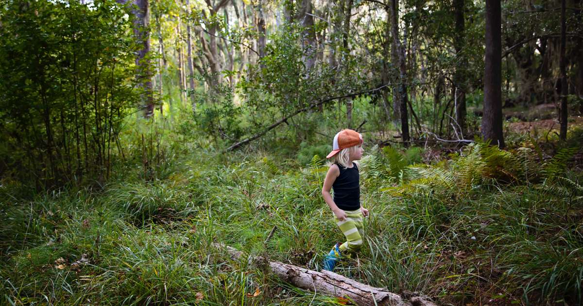 A weekend with children in the woods | Beanstalk Mums