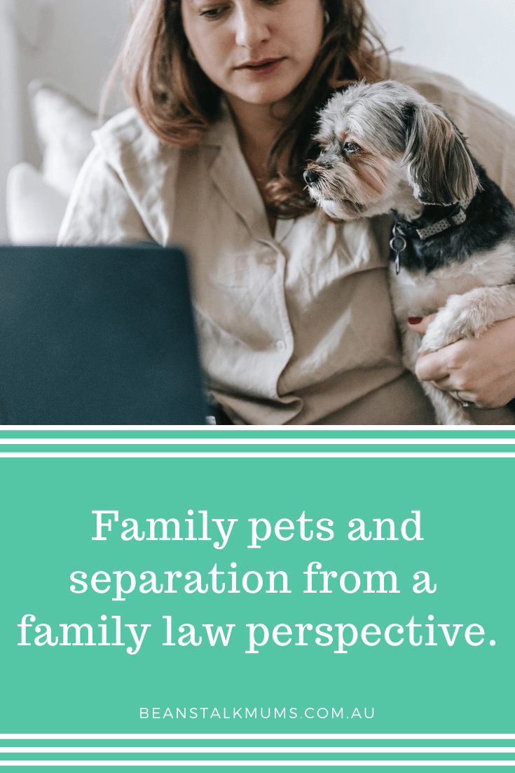 Pets and separation   Beanstalk Single Mums Pin